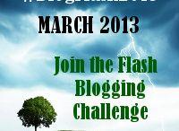 #BlogFlash2013