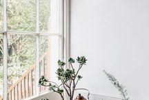 ROŚLINY WE WNĘTRZACH/ plants in interior design