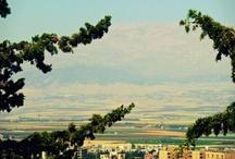 Lebanese beauty