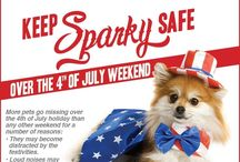July 4th and Summer Safety