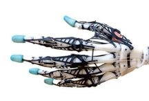 Organizm technologiczny
