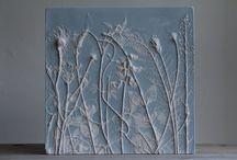 Plaster botanicals
