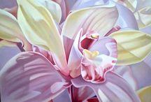 Art orchids