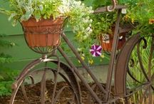 RUSTIC BIKES / by Dick N Jan Breedlove