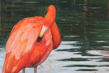 Golden K Studio / Wildlife and Nature paintings by Cindy Sorley-Keichinger