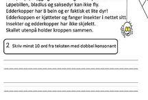 Norsk - skole