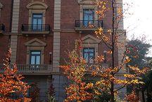 ❤MUSEOS / Maravillosos museos de Madrid