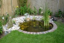 Small ponds ideas