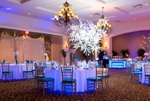 Rosen Plaza Weddings / by Rosen Hotels & Resorts Weddings