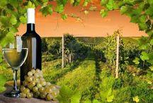 MADE in ITALY  MAGAZINE / Notizie, Articoli, interviste e curiosità dal mondo del Made in Italy dal sito www.madeitalyymag.blogspot.com