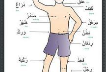 Arabic body