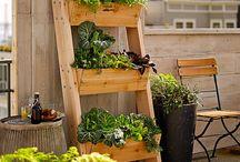 Jardines / Ideas bonitas para jardines