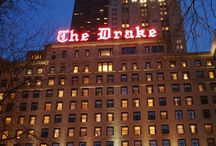Lotus in pictures:  The Drake Hotel