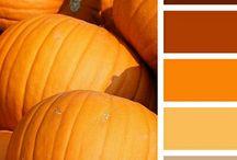 ORANGE | ORANŽOVÁ / Oranžová - se řadí k teplým, aktivním barvám s poměrně vysokou světelnou odrazivostí a na rozdíl od žluté má daleko vyšší tepelné působení. Je to společenská a vysoce komunikativní barva, barva slunce a země. Je to barva pokušení, zábavy. Podporuje chuť k jídlu. S oranžovou můžeme vytvořit dramatické kontrasty a živé prostředí tam, kde je to žádoucí. Kuchyně, jídelna, obývací část jsou ideální pro použití oranžové... http://paletabarev.webnode.cz/orange/