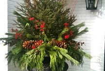 Winter Containers