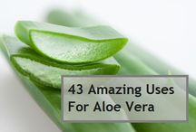 Uses for Aloe Vera / by Pam Garrison