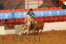AQHA Versatility Ranch Horse & Cowboy Mounted Shooting World Championships