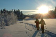 Winter Activities in Taivalkoski
