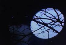 Brujas / Luna llena