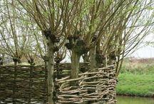 vrbove stavby