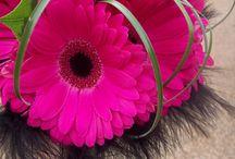 Wedding Flowers / by 52 Week Challenge UK