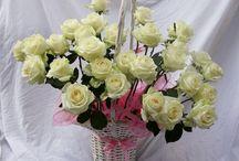 """Pugéty z růží / Aranžujeme originální kytice, které ženy """"ještě neviděly a nedostaly"""". Vkusně kombinujeme květiny, zejména růže, a pugéty vážeme tak, aby odpovídaly příležitosti, na kterou jsou objednané. Dáváme si záležet na tom, aby výsledek uchvátil nejenom obdarovávaného, ale i darujícího. Naše kytice jsou vhodné jako narozeninové dárky, květiny k výročí nebo k usmíření ženy. Aranžujeme také svatební nebo smuteční kytice. Naše pugéty neomylně ocení všechny ženy. www.moyaflowers.cz"""