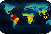 Global Mappings / Our collection of Earth's ecological mappings from various sources. Helps us to visualize HOW our planet's species are organized, and how best to protect our planet's biological integrity. To learn more contact us via: http://BioIntegrity.net #BioIntegrity