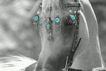 ##!Turquoise!##
