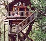 Tree Houses We Could Hide In