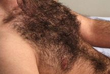 hairy chests