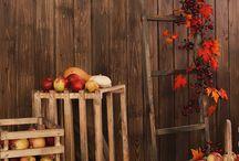 фотозона осень