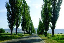 I traveled to: Muntii Macin