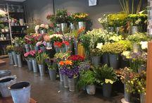 Bloemen winkel:) (werk)