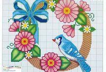 Birds in colour