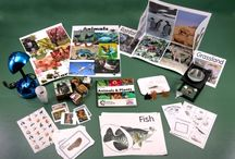 1st Grade Science Kits / Our 1st grade science kits that we design and manufacture right here at the Center for Hands-On Learning. Includes everything you need to teach the lessons included.