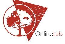 online-lab - Сетевая лаборатория / Услуги по созданию, сайтов: промо-сайт, корпоративный, интернет-магазин. Продвижение сайтов - от молодых, до крупных интернет-порталов. Комплексные услуги маркетинга, контекстная реклама, управление репутацией.