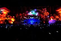 Electric Daisy Carnival 2013 / Pix from EDC Las Vegas XyloBands from TLC Creative