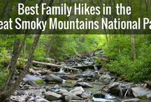 Asheville and the North Carolina Smokies with Kids / Family vacation planning for the Asheville area of North Carolina