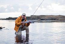 December Top 10 Ten Fishing Photos / The chosen top ten photos from our December photo of the month competition!