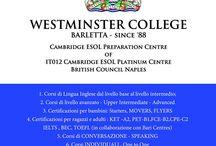 Sistemazione a LONDRA / Riusciamo a trovare una sistemazione a molti studenti a Londra, in famiglia oppure in college