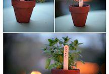 Garden ideas/likes