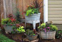 Garden Pot Ideas / Garden Pot Ideas