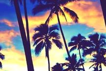 Summer .