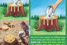 stump away