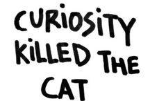 Curiosità e altro