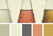 color+neutrals / by Gina Martin Design