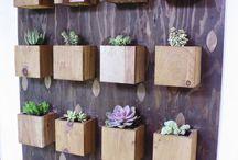 decoración plantas de interior