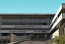 Licence Pro ATC design numérique