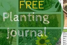Planting and Growing Journals