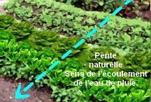 Permaculture, composteur
